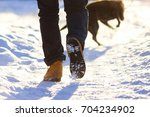 blurred leg of man and dog in... | Shutterstock . vector #704234902
