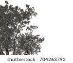 3d rendering of a silver tree... | Shutterstock . vector #704263792