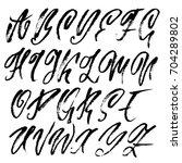 hand drawn elegant calligraphy... | Shutterstock .eps vector #704289802