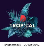 bright tropical background with ... | Shutterstock .eps vector #704359042