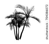vector palm tree silhouette... | Shutterstock .eps vector #704386072
