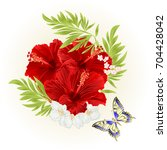 red hibiscus tropical flowers ... | Shutterstock .eps vector #704428042