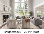 beautiful furnished living room ... | Shutterstock . vector #704447005