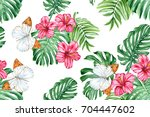 hibiscus  tropical leaves and...   Shutterstock . vector #704447602