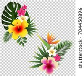 tropical flower set transparent ... | Shutterstock . vector #704450896