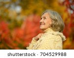 happy senior woman   Shutterstock . vector #704529988