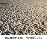 trampled beach in the sunset...   Shutterstock . vector #704557072