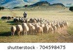 Shepherd And Herd Of Sheep