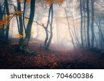 Autumn Forest In Fog. Colorful...