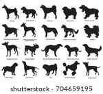 Stock vector vector set of different breeds dogs silhouettes isolated in black color on white background part 704659195