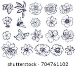 flower set | Shutterstock .eps vector #704761102