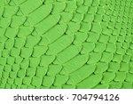 green snake scales macro...   Shutterstock . vector #704794126