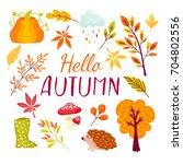 fall festival template. bright... | Shutterstock .eps vector #704802556