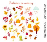 autumn set of elements in the... | Shutterstock .eps vector #704802562