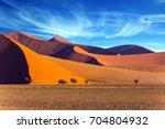 The Namib Naukluft Park At...