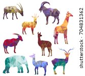 polygonal silhouettes of... | Shutterstock .eps vector #704831362