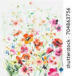 the flowers in the sunny day ... | Shutterstock . vector #704863756