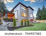 luxurious contemporary three... | Shutterstock . vector #704907382