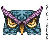 muzzle of an owl illustration... | Shutterstock .eps vector #704926966