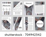 abstract vector layout... | Shutterstock .eps vector #704942542