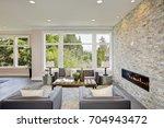 modern great room features a... | Shutterstock . vector #704943472
