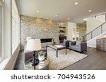 modern great room features a... | Shutterstock . vector #704943526