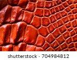 freshwater crocodile belly skin ... | Shutterstock . vector #704984812