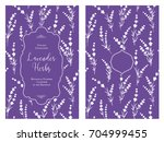 the book cover design with... | Shutterstock .eps vector #704999455
