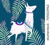 alpaca illustration | Shutterstock .eps vector #705023962
