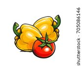 fresh whole ripe red tomato and