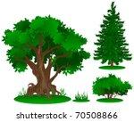 Vector Trees Series  In Summer...