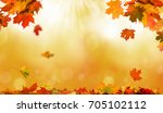 autumn leaves  | Shutterstock . vector #705102112