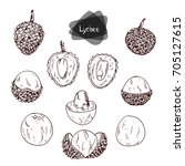 hand drawn sketch style lychee... | Shutterstock .eps vector #705127615