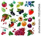 watercolor illustration  set of ... | Shutterstock . vector #705134566