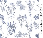 botanical seamless pattern with ... | Shutterstock .eps vector #705139045