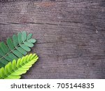 nature background | Shutterstock . vector #705144835