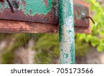 Dew Covered Spiderweb On The...