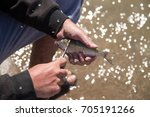 fisherman to clean a fish with