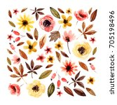 watercolor floral elements... | Shutterstock . vector #705198496