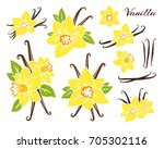 vanilla icons collection.... | Shutterstock .eps vector #705302116
