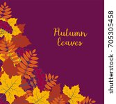 autumn floral background with... | Shutterstock .eps vector #705305458