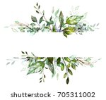 botanic card  watercolor... | Shutterstock . vector #705311002