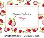 vector square label  pitaya jam ... | Shutterstock .eps vector #705318436