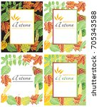 frame illustration with autumn... | Shutterstock .eps vector #705343588