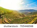 douro valley in porto wine... | Shutterstock . vector #705448588