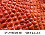 freshwater crocodile belly skin ... | Shutterstock . vector #705513166