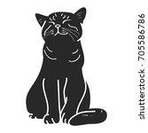 silhouette of cat on white...   Shutterstock .eps vector #705586786