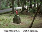 green moss inside a precinct of ... | Shutterstock . vector #705640186