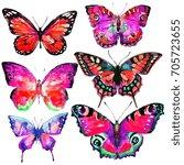 beautiful pink butterfly... | Shutterstock . vector #705723655