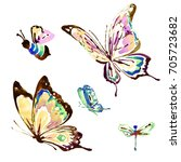 beautiful color  butterflies... | Shutterstock . vector #705723682